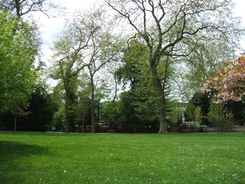 Les pelouses du Parc.JPG